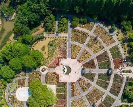 湖北市政园林规划
